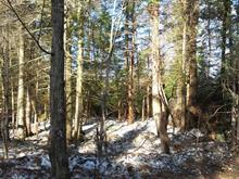 Lot for sale in Ivry-sur-le-Lac, Laurentides, Chemin du Lac-de-la-Grise, 12093616 - Centris.ca
