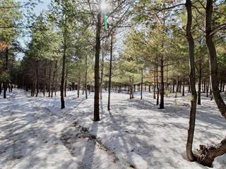 Lot for sale in Rouyn-Noranda, Abitibi-Témiscamingue, 7204B, Rue  Saguenay, 11356835 - Centris.ca