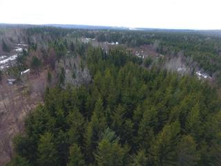 Land for sale in Lac-Etchemin, Chaudière-Appalaches, Traverse du 8e-au-10e-Rang, 25872228 - Centris.ca