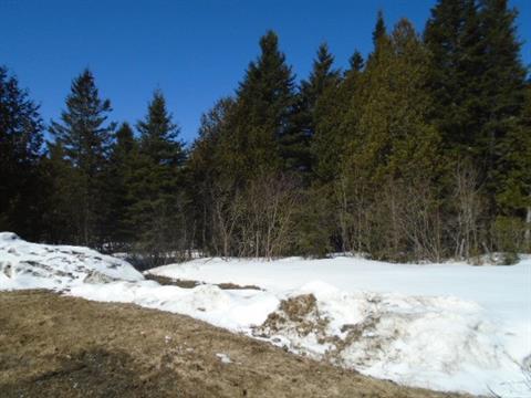 Land for sale in Sainte-Cécile-de-Whitton, Estrie, Rue  Principale, 9630961 - Centris.ca