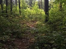 Lot for sale in Kazabazua, Outaouais, Chemin  Harshaw, 17448246 - Centris