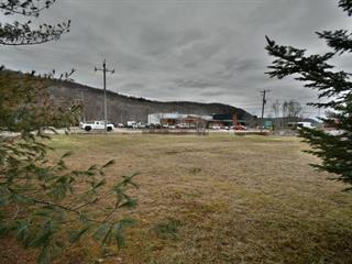 Terrain à vendre à Mont-Tremblant, Laurentides, Chemin de Brébeuf, 24417733 - Centris.ca