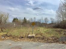 Terrain à vendre à Gatineau (Gatineau), Outaouais, Rue  Schingh, 24831304 - Centris.ca