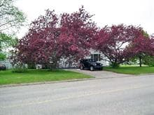 Mobile home for sale in Roberval, Saguenay/Lac-Saint-Jean, 760, Avenue  Amyot, 23353170 - Centris.ca