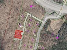 Lot for sale in Mont-Tremblant, Laurentides, Chemin des Muses, 24726693 - Centris.ca