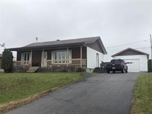House for sale in Shawville, Outaouais, 723, Rue  Gibson, 16028169 - Centris.ca