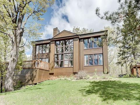 Maison à vendre à Pontiac, Outaouais, 162, Chemin du Sumac, 14733375 - Centris.ca