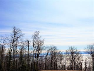 Terrain à vendre à Petite-Rivière-Saint-François, Capitale-Nationale, Chemin  Josaphat, 20699376 - Centris.ca