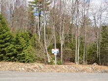 Terrain à vendre à Sainte-Anne-des-Lacs, Laurentides, Chemin des Rossignols, 19476609 - Centris.ca