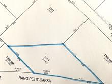 Terrain à vendre à Pont-Rouge, Capitale-Nationale, Rang  Petit-Capsa, 19826221 - Centris.ca