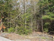 Lot for sale in Saint-Denis-de-Brompton, Estrie, Chemin  Deschesne, 16787615 - Centris