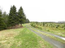 Terre à vendre à La Patrie, Estrie, Route  Daniel, 13203660 - Centris.ca