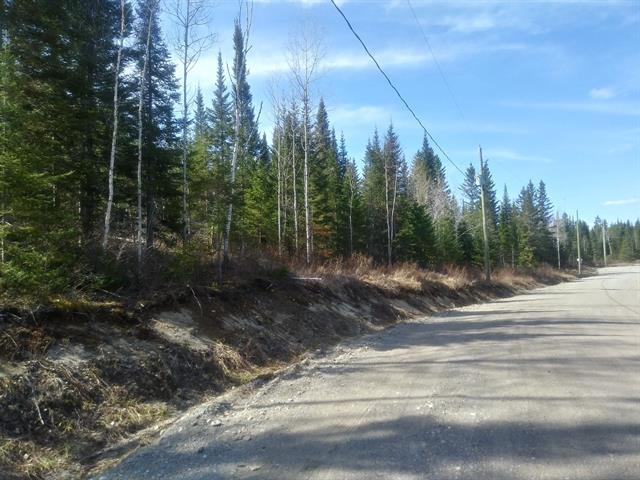Terrain à vendre à Saint-Honoré, Saguenay/Lac-Saint-Jean, 12, Chemin de la Source, 19876900 - Centris.ca