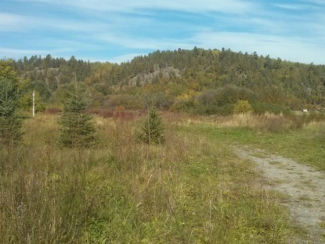 Lot for sale in Saint-Fulgence, Saguenay/Lac-Saint-Jean, 700, Rue  Gédéon-Lavoie, 22620479 - Centris.ca
