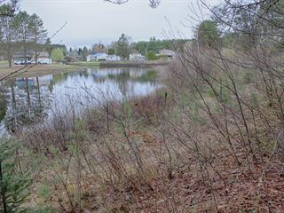 Lot for sale in Chénéville, Outaouais, Rue  Albert-Ferland, 18894595 - Centris.ca