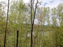 Terrain à vendre à La Macaza, Laurentides, Chemin du Lac-Macaza, 17040429 - Centris.ca