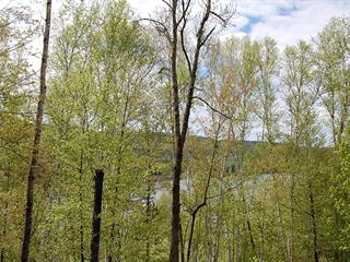 Lot for sale in La Macaza, Laurentides, Chemin du Lac-Macaza, 17040429 - Centris.ca
