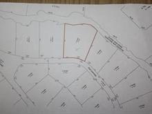 Lot for sale in Chertsey, Lanaudière, Rue  Daphnie, 15661697 - Centris.ca