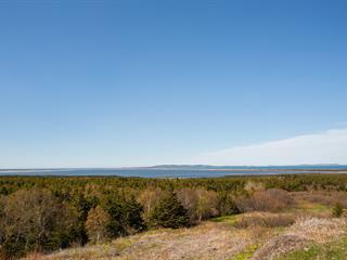 Terrain à vendre à Les Îles-de-la-Madeleine, Gaspésie/Îles-de-la-Madeleine, Chemin de la Montagne, 15225373 - Centris.ca
