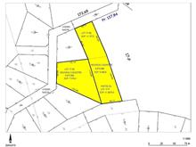 Lot for sale in Notre-Dame-de-la-Salette, Outaouais, Chemin  Nadon, 20976374 - Centris.ca