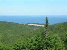 Land for sale in Gaspé, Gaspésie/Îles-de-la-Madeleine, Rang 2 Ouest, 24616472 - Centris.ca