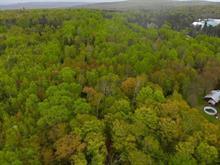 Terre à vendre à Rivière-Rouge, Laurentides, Chemin  Laliberté, 19154690 - Centris.ca