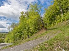 Terrain à vendre à Orford, Estrie, Chemin de la Chaîne-des-Lacs, 18959463 - Centris.ca