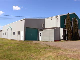 Bâtisse industrielle à vendre à Saint-Pascal, Bas-Saint-Laurent, 625, Avenue  Bérubé, 15812220 - Centris.ca