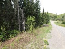 Lot for sale in Saint-Adolphe-d'Howard, Laurentides, Chemin du Petit-Pont, 18303031 - Centris.ca