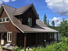 Maison à vendre à Waltham, Outaouais, Lac  Sauriol, 20006832 - Centris