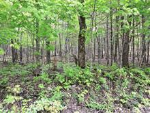 Lot for sale in Harrington, Laurentides, Chemin des Sapins, 25214229 - Centris.ca