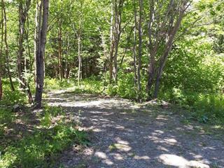 Land for sale in Saint-Philémon, Chaudière-Appalaches, Rang  Saint-Ignace, 23779233 - Centris.ca
