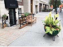 Local commercial à louer à Outremont (Montréal), Montréal (Île), 1226, Avenue  Bernard, 24060769 - Centris.ca