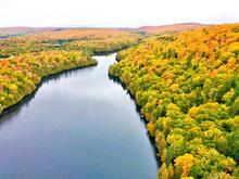 Land for sale in Lac-Saguay, Laurentides, 01, Lac  Long, 17314757 - Centris.ca
