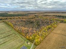 Hobby farm for sale in Saint-Jude, Montérégie, 2400Z, Rang  Salvail Nord, 17406199 - Centris.ca