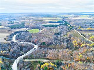 Land for sale in Deschaillons-sur-Saint-Laurent, Centre-du-Québec, Rang  Saint-Joseph, 11251254 - Centris.ca