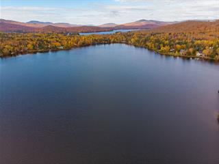 Lot for sale in Saint-Donat (Lanaudière), Lanaudière, Chemin  La Chanterelle, 16450450 - Centris.ca