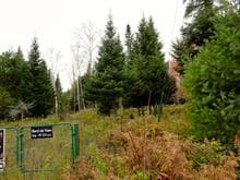 Lot for sale in Sainte-Adèle, Laurentides, Rue du Manège, 26033915 - Centris.ca