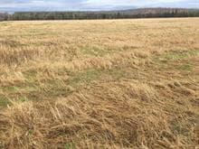 Terre à vendre à Saint-Isidore-de-Clifton, Estrie, Chemin des Perron, 13204225 - Centris.ca