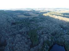 Land for sale in Notre-Dame-du-Laus, Laurentides, 436, Chemin du Ruisseau-Serpent, 11905061 - Centris