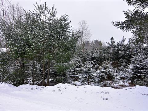 Terrain à vendre à Lac-Brome, Montérégie, Rue des Ruisseaux, 10278616 - Centris.ca