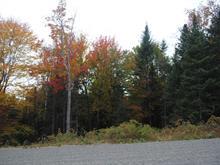 Lot for sale in Lac-Supérieur, Laurentides, 13, Chemin du Lac-Supérieur, 15226307 - Centris.ca