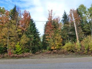 Terrain à vendre à Mandeville, Lanaudière, Chemin de la Branche-à-Gauche, 26111732 - Centris.ca