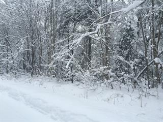 Lot for sale in Wentworth-Nord, Laurentides, Chemin du Lac-Rond, 16917100 - Centris.ca