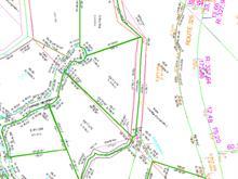Terrain à vendre à Saint-Donat (Lanaudière), Lanaudière, Impasse de l'Eau-Vive, 10544496 - Centris.ca