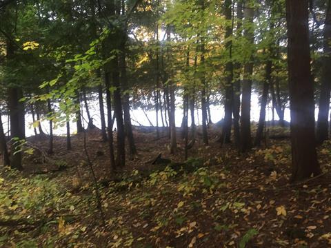 Lot for sale in Duhamel, Outaouais, Chemin du Lac-Doré Nord, 18576527 - Centris.ca