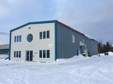 Bâtisse industrielle à vendre à Val-d'Or, Abitibi-Témiscamingue, 1082 - 1086, Rue des Manufacturiers, 17371146 - Centris