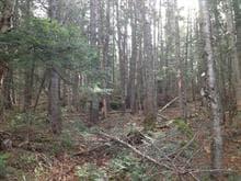 Terrain à vendre à Saint-Adolphe-d'Howard, Laurentides, Chemin  Gémont, 10941484 - Centris.ca