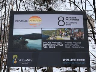 Lot for sale in Mont-Tremblant, Laurentides, 8, Allée  Robert, 19285877 - Centris.ca