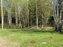 Terrain à vendre à Jonquière (Saguenay), Saguenay/Lac-Saint-Jean, 4746, boulevard du Royaume, 27594637 - Centris.ca